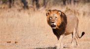 Evaluatie Zuid-Afrika reis: Uulke