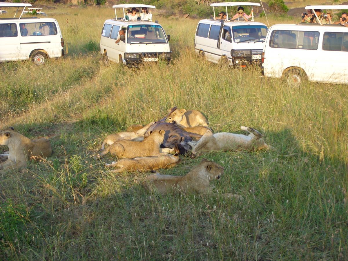 Kenia vervoer - Kazuri Safaris