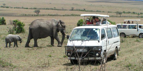 Kenia – Kazuri Safaris (114)