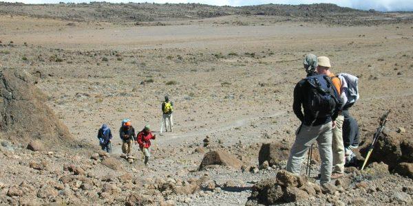 Kilimanjaro – Kazuri Safaris (13)