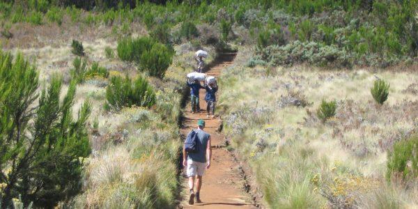 Kilimanjaro – Kazuri Safaris (19)
