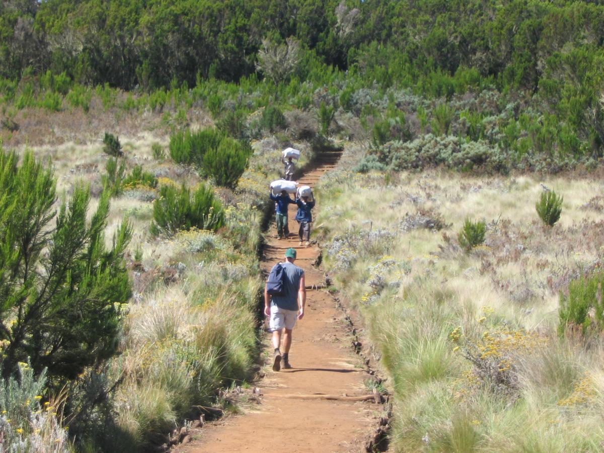 Kilimanjaro - Kazuri Safaris (19)