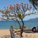 Kazuri Malawi-Zuid - 16 dagen