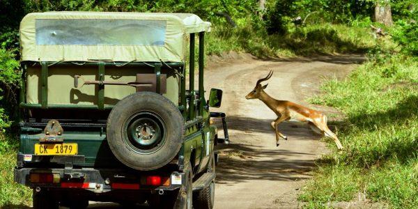 Malawi-Kazuri-Safaris (7)