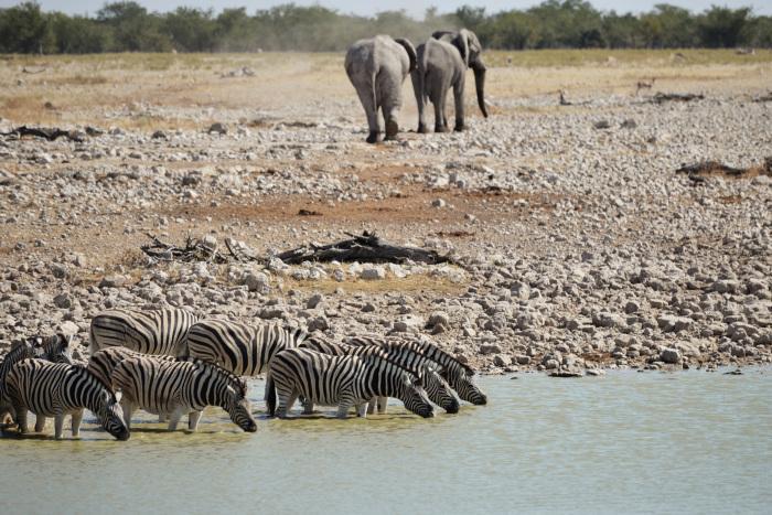 Evaluatie Namibië reis: Bianca