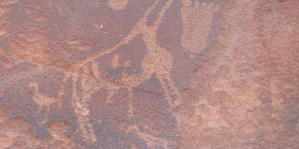 Namibie-Kazuri Safaris (96)