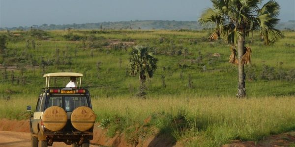 Oeganda-Kazuri-Safaris (69)