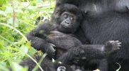 Evaluatie Oeganda & Tanzania reis: Linsey