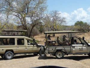 Zuid-Tanzania-kazuri-safaris