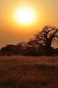 Kazuri Safaris - Tanzania