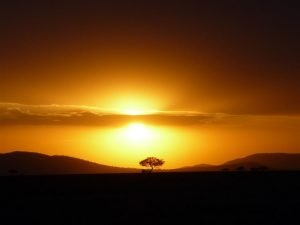 Zonsondergang Serengeti - Kazuri Safaris