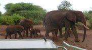 Evaluatie Tanzania reis: Mirjam