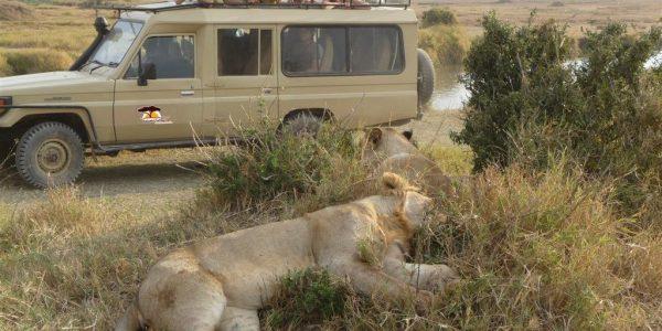 Tanzania-Kazuri-Safaris (6)