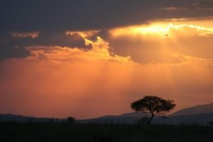 Serengeti Kazuri Safaris