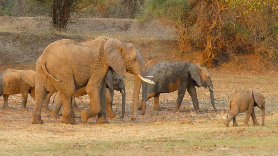 Malawi & Zambia - Kazuri Safaris