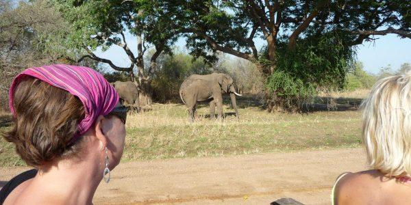 zambia-kazuri-safaris-68