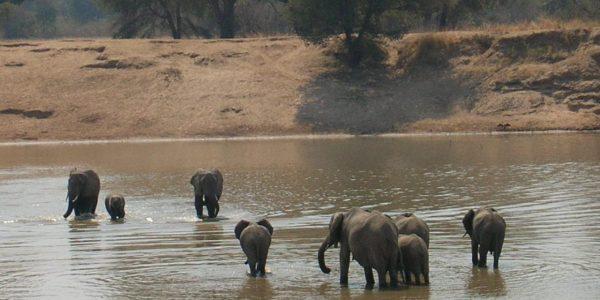zambia-kazuri-safaris-77