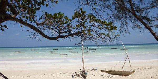 Zanzibar-Kazuri-Safaris (58)